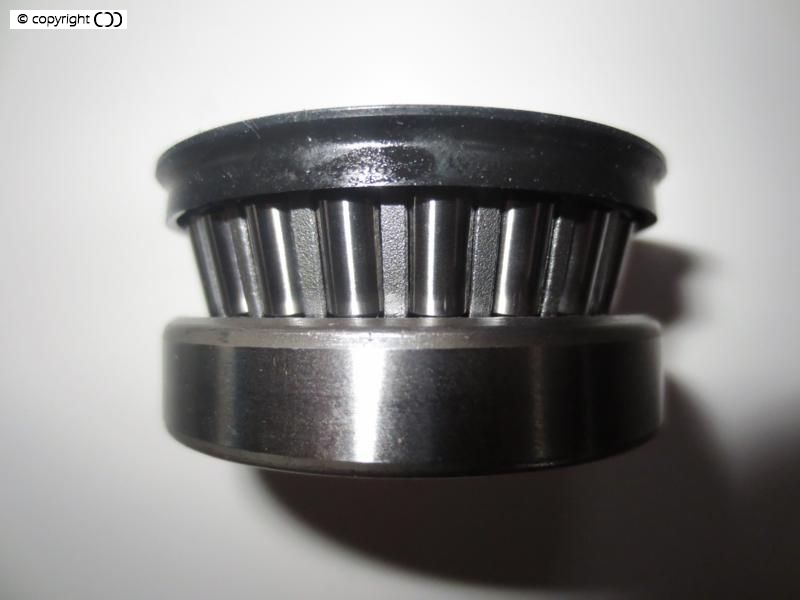 Bearing showing seal